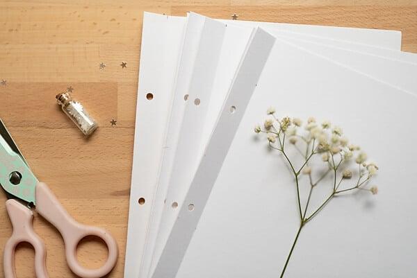 create a travel journal step 4