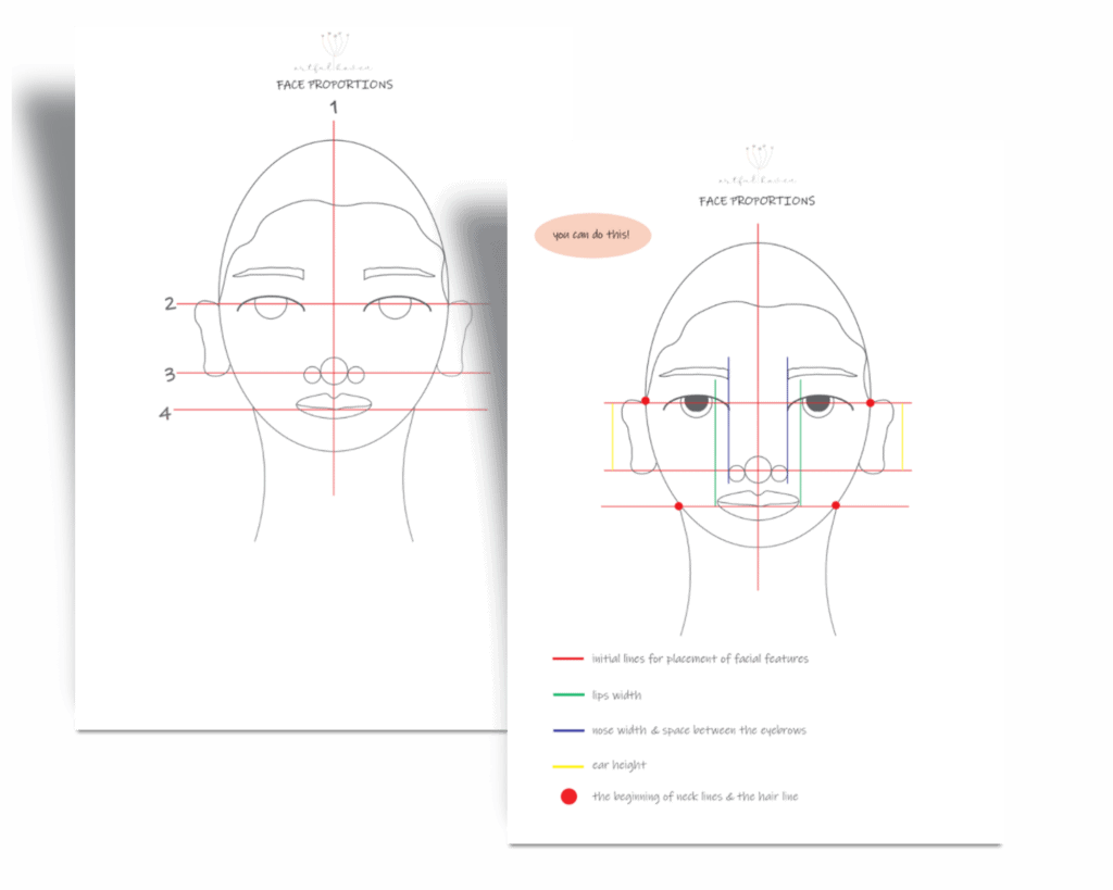 face proportions guide